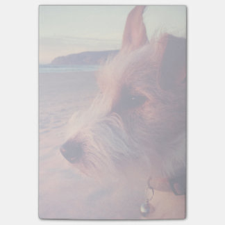 Dog Facing The Beach Post-it Notes