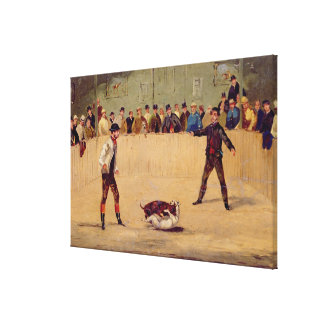 Dog Fighting (oil on paper) Stretched Canvas Print