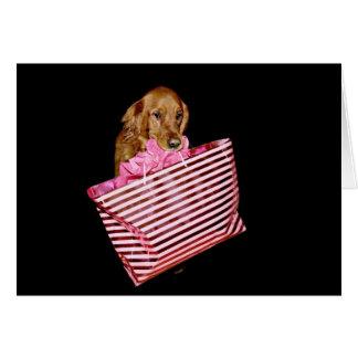 Dog goes shopping card