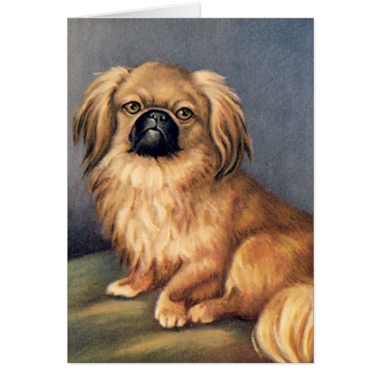 Dog greetings card