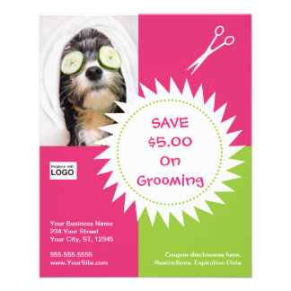 Dog grooming coupon flyer