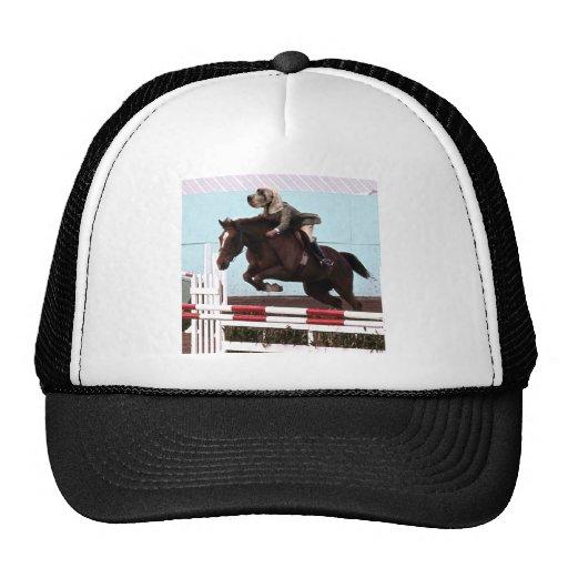 Dog Horse Jump Trucker Hats