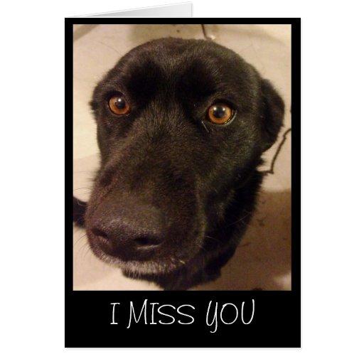 Dog I Miss You Greeting Card