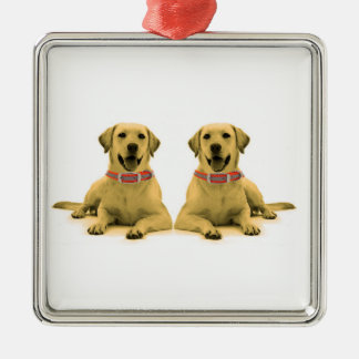 Dog image for Premium Square Ornament