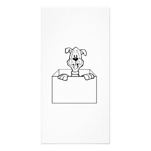 Dog in a Box Photo Cards