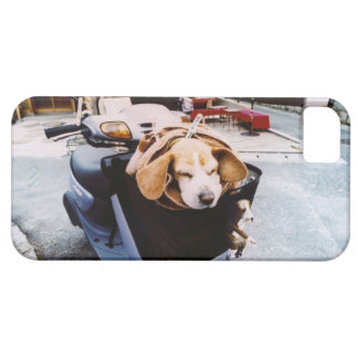 Dog in Basket of Motorscooter iPhone 5 Covers