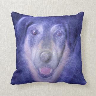 Dog in blue smoke cushion