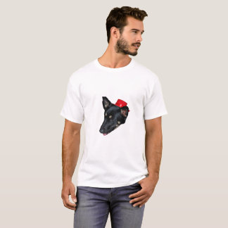 Dog in red hat shirt