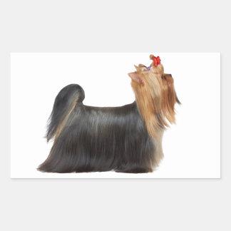 Dog in show rectangular sticker