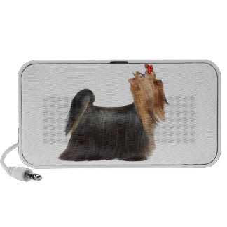 Dog in show travelling speakers