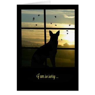 Dog in Window Dog Sympathy Card