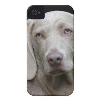 dog iPhone 4 Case-Mate cases