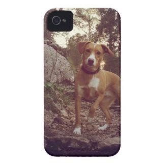 dog iPhone 4 cases