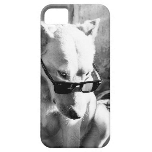 Dog Jack iPhone 5 Case