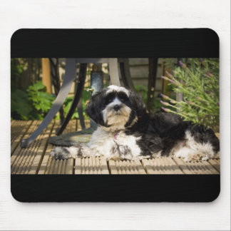 Dog laying on decking in the sun mouse pad