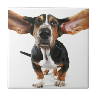 Dog long ears tile