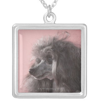 Dog looking away silver plated necklace
