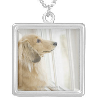 Dog looking out window silver plated necklace