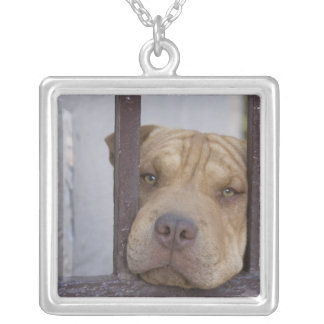Dog looking through a gate, Valparaiso, Square Pendant Necklace