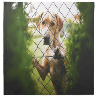 Dog Looking Through Fence Napkin