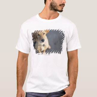 Dog looking up, close-up T-Shirt