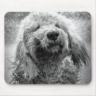dog mouse pad