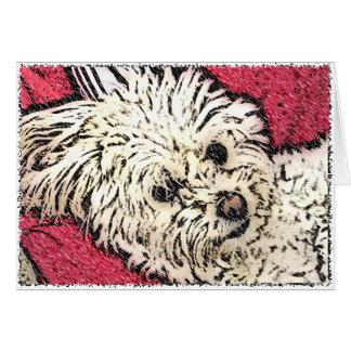 DOG: Multi-Poo Kicking Back Greeting Card
