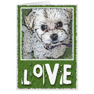 DOG: Multi-Poo Puppy Kooky Eyes Love Greeting Card