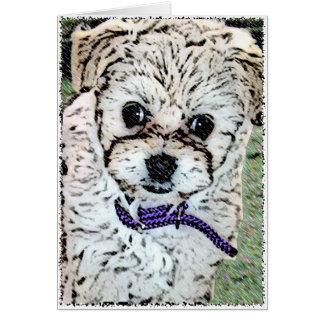 DOG: Multi-Poo Puppy Miss Kooky Eyes Greeting Card