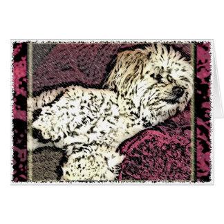 Dog: Multi-Poo Taking a Dog Nap Greeting Card
