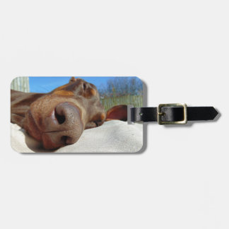 Dog nose luggage tag