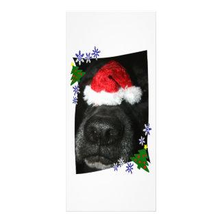 Dog Nose Wearing Santa hat, black lab mix Full Colour Rack Card