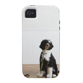 dog on a leash Case-Mate iPhone 4 cases