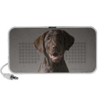dog on a pedestal portable speaker