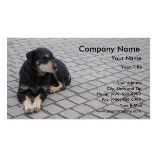 Dog on street business card