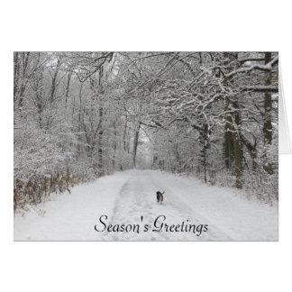 Dog On the Trail Season's Greeting Card