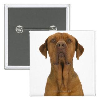 Dog on White 38 15 Cm Square Badge