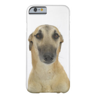 Dog on White 41 Barely There iPhone 6 Case