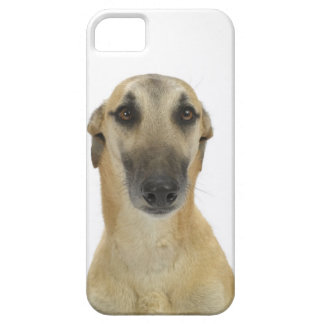Dog on White 41 iPhone 5 Covers