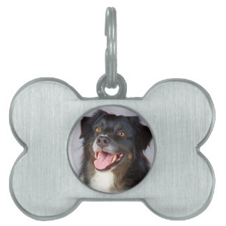 Dog painting - dog art - pet art pet ID tag