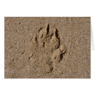 Dog Paw Print in Sand Card