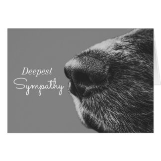 Dog Pet Sympathy | Dog Condolence Note Card