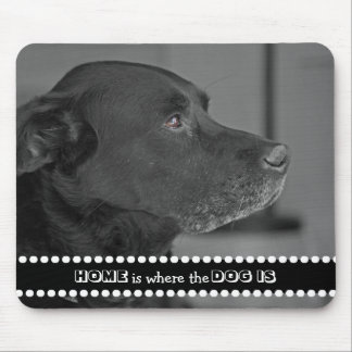 Dog Photo Home Is Where the Dog Is Cute Quote Mouse Pad