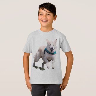 Dog Picture Boy's Tshirt