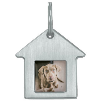 Dog portrait pet tag