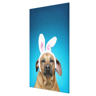 Dog portrait wearing Easter bunny ears Canvas Print