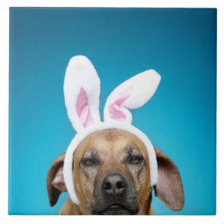 Dog portrait wearing Easter bunny ears Large Square Tile