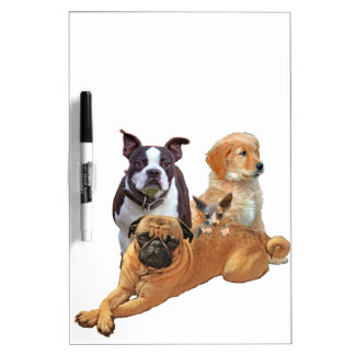 Dog posse with cat dry erase board