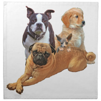 Dog posse with cat napkin