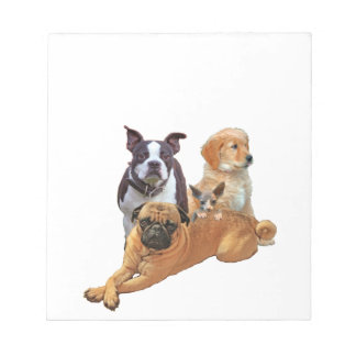 Dog posse with cat notepad